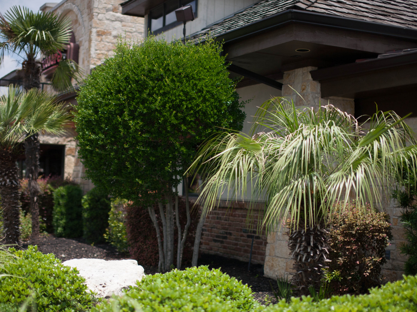 Worry Free Lawn Treatments In Temple & Waco Texas