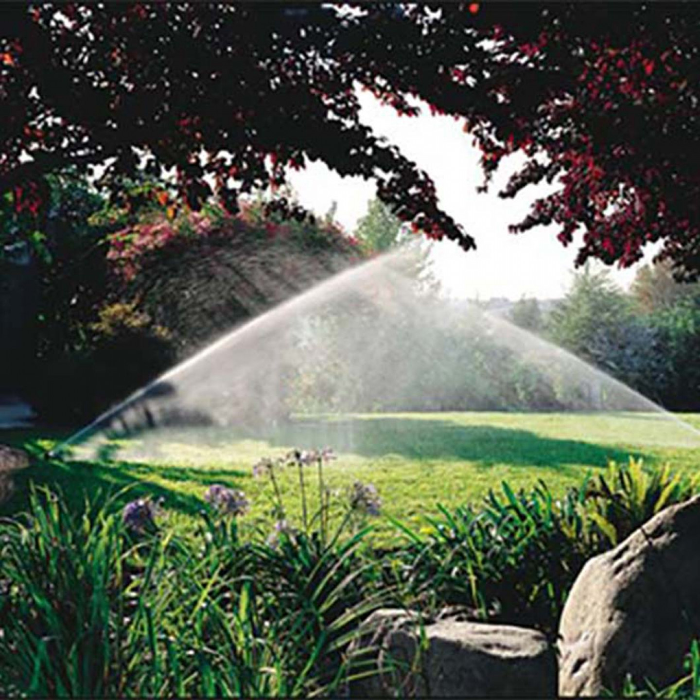 The Main Benefits Of Installing An Irrigation System: